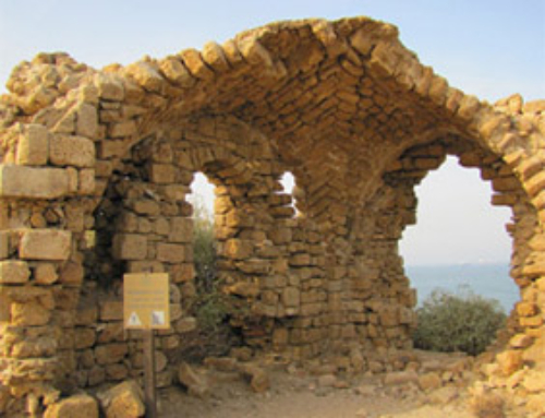 For 2nd Timers, Ashkelon National Park