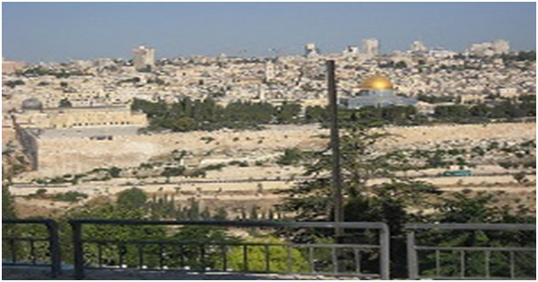 View from Mt. of Olives Photo by Marci Isaacs